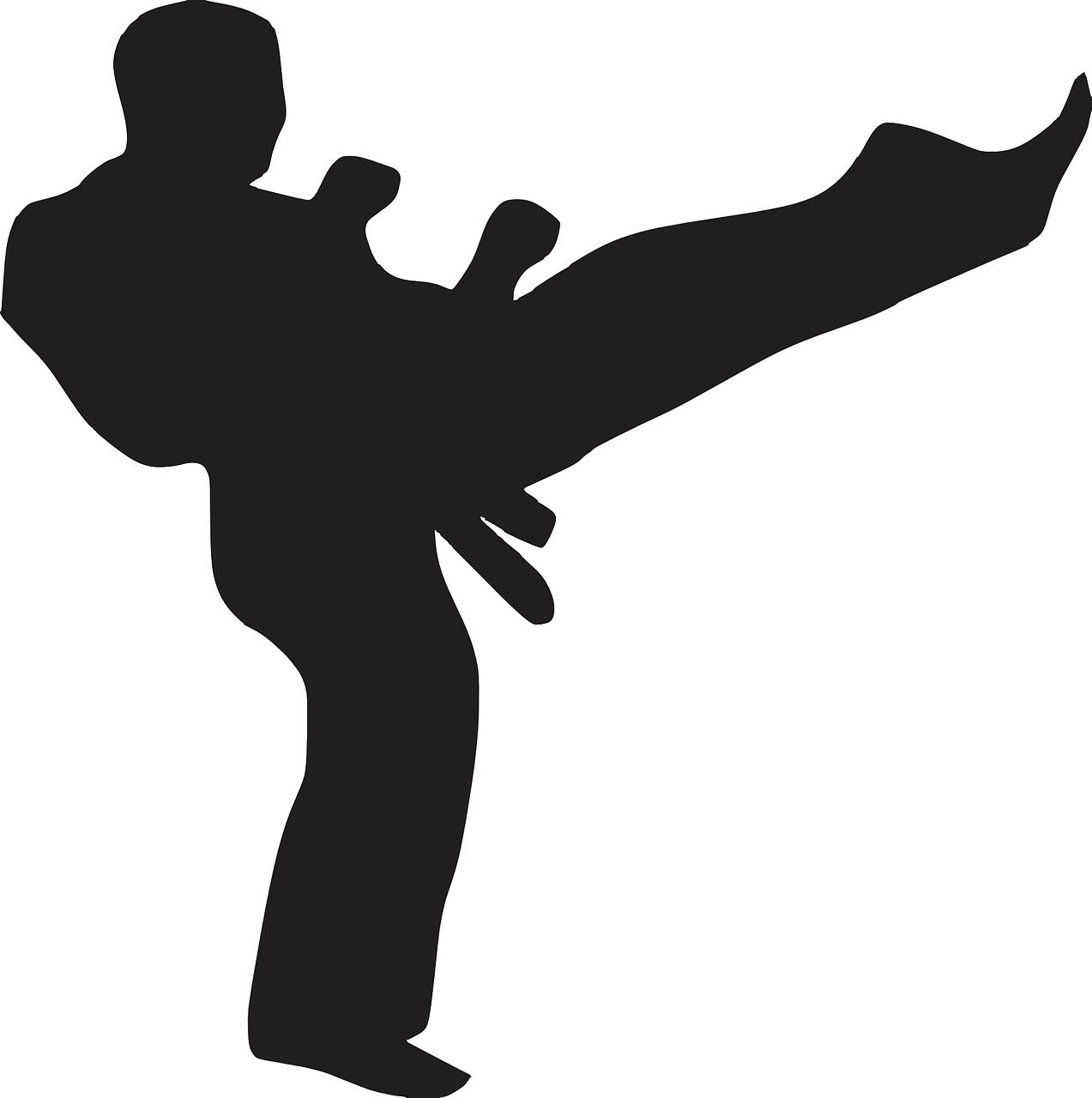 List of The Best Martial Arts To Get in Shape | The Hobbyts